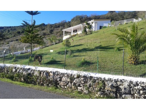 Quintinha 6560 m ², with improvements! 