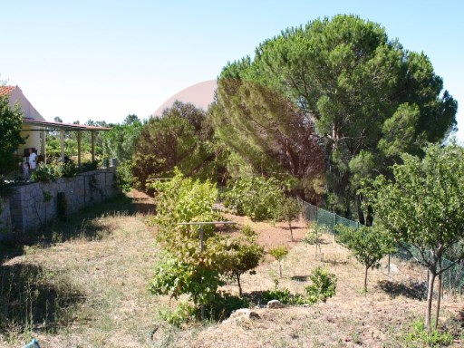 Farm-Sale-Monchique, Algarve | 2 Bedrooms