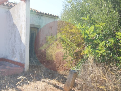 Farm-Sale-Portimão, Algarve |