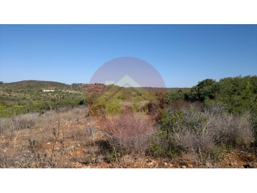 Farm- Sale - Vila do Bispo - Lagos, Algarve |