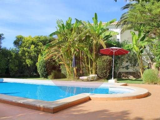 Farm › Silves | 8 Bedrooms