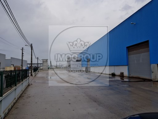 Warehouse › Vagos |