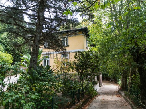 House › Sintra | 6 Bedrooms | 4WC