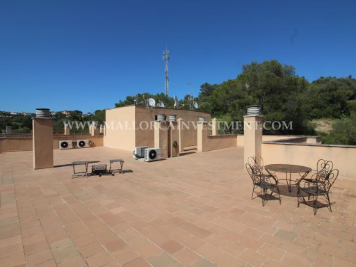 Penthouse for sale in Cala Mayor, Palma de Mallorca. Real Estate Mallorca Investment | 3 Bedrooms | 2WC