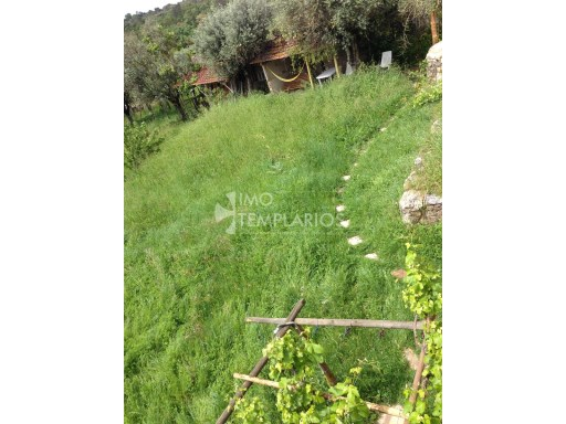 Farm with House T4 in stone and 2 suites with 50 m 2 each.%81/122