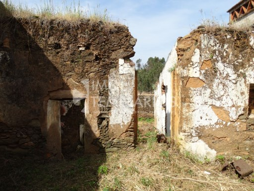 Residences in Ruins with Terrace Floor-Couple of King%20/38