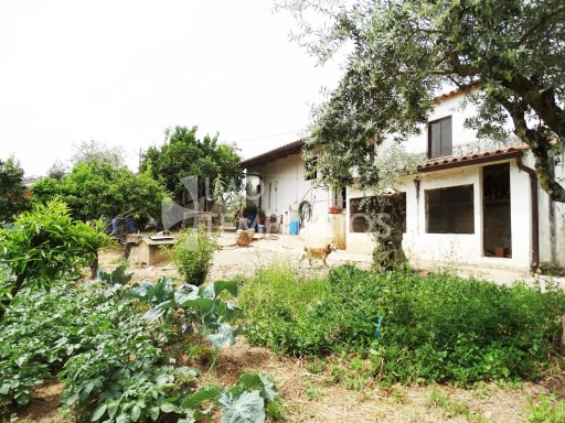 Village house c/1500 m2 of land-Ferreira do Zêzere%1/22