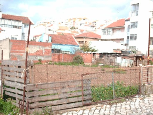 Lote › Sintra |