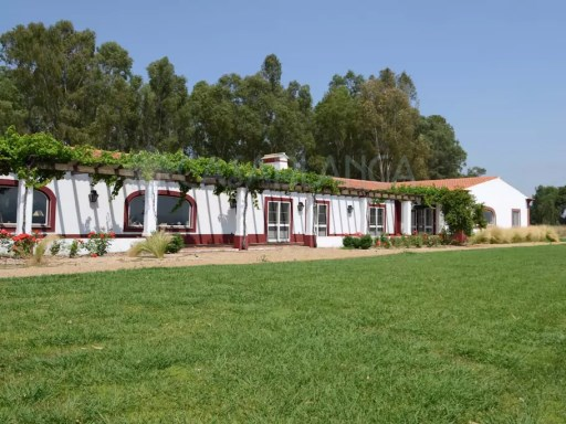 Fantastic Alentejo Estate with vineyard, cork and olive trees | 11 Pièces