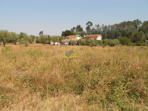 Building plot of approximately 2620m2, located in a small village just outside the large town of Miranda do Corvo.  |