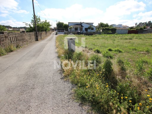 Urban land with 2030m2 with EN109 road and front for the rua Dom Dinis |