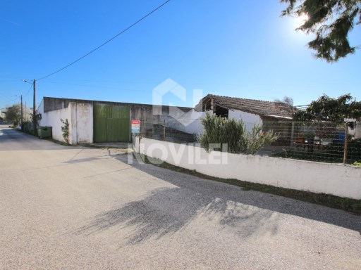 Agricultural warehouse and attachments, urban land with 2335m2 and feasibility of construction |