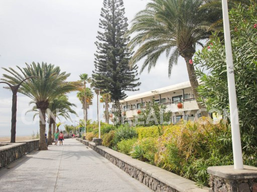 APA_213 Apartment in Playa del Ingles just 150 m from the beach! | 2 Zimmer | 1WC