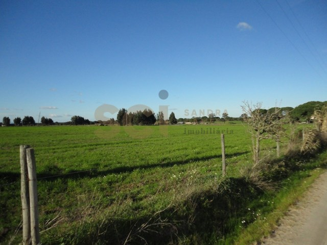 TERRENO AGRICOLA 10Ha (100.000m2)