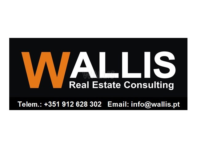 Wallis Real Estate Consulting - novo