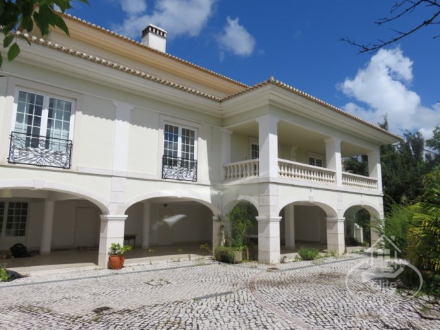 MOR_4302