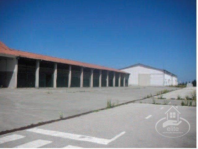 warehouse in montijo in a batch of 5 HA |
