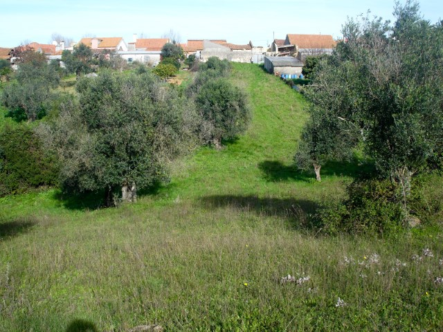 Land with 2 Ruins, near Santarém, for sale