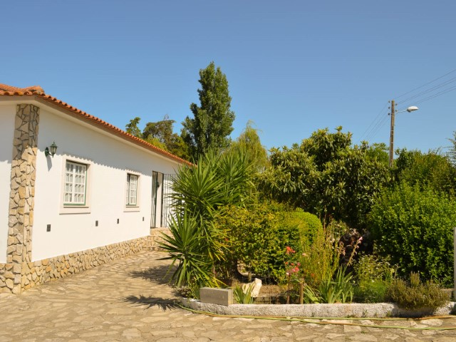 Farm with House 3 bedrooms near Santarém