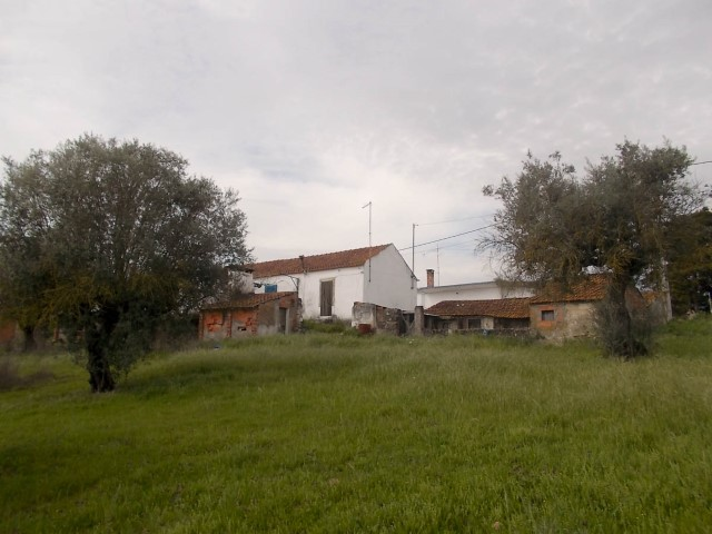 Country Home  › São Vicente do Paul e Vale de Figueira