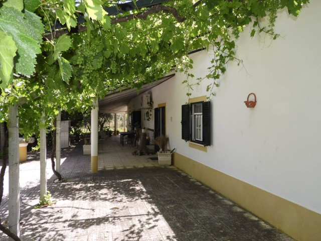 House 2 Bedrooms › Coruche, Fajarda e Erra