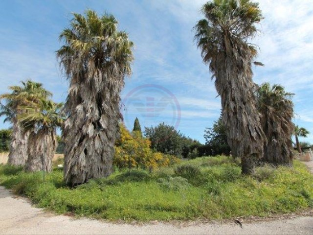 Land For Sale Loulé - Almancil
