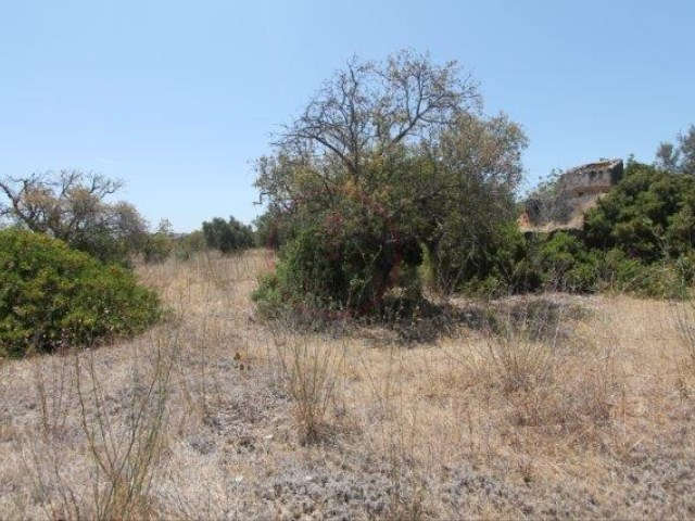 Lot with approved project for Villa with 3 bedrooms |
