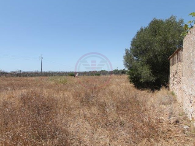 Large plot with ruin for construction |