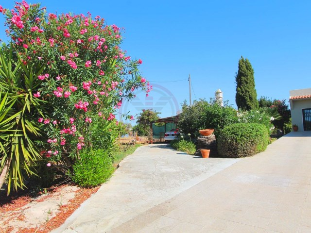 Villa near Faro with 3 bedrooms and a large Orange Grove | 3 Bedrooms | 2WC