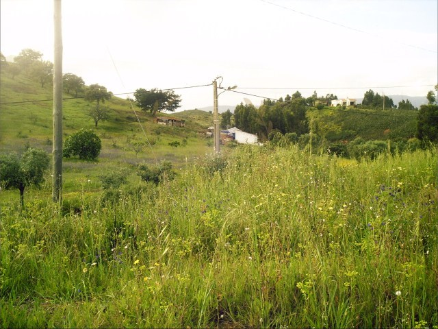 Urban land in the Green Lady with 1728m2 |