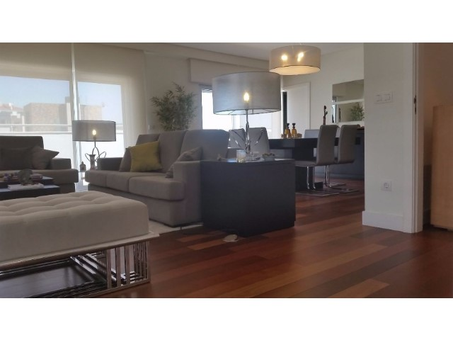 Penthouse T5 › Benfica