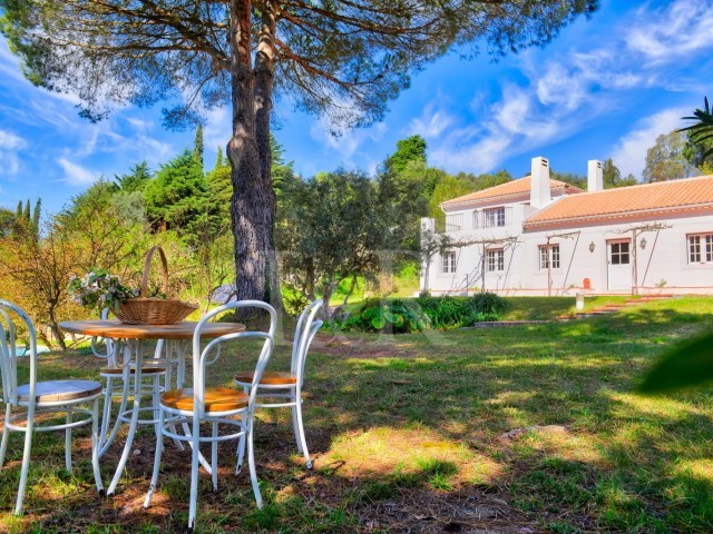 7 BEDROOM HOUSE WITH VINEYARD IN THE NATURAL PARK OF ARRÁBIDA, NEAR THE SEA | 7 Bedrooms