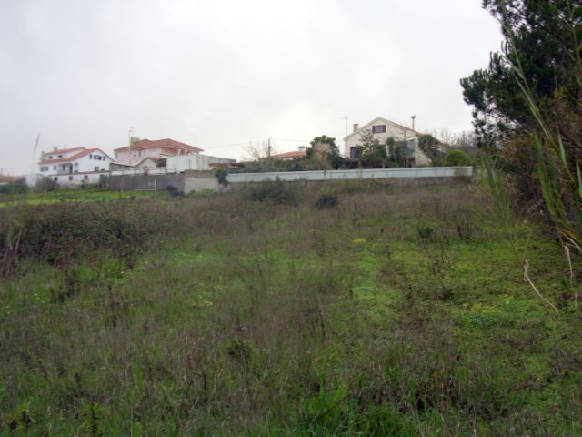Land in Caldas da Rainha 01.JPG
