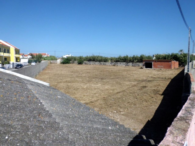 Plot in Peniche 1.JPG