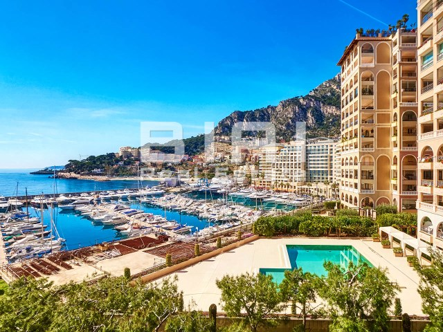 Apartment 3 Bedrooms › Stade Louis II