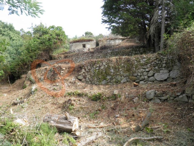 Land with Ruin for sale