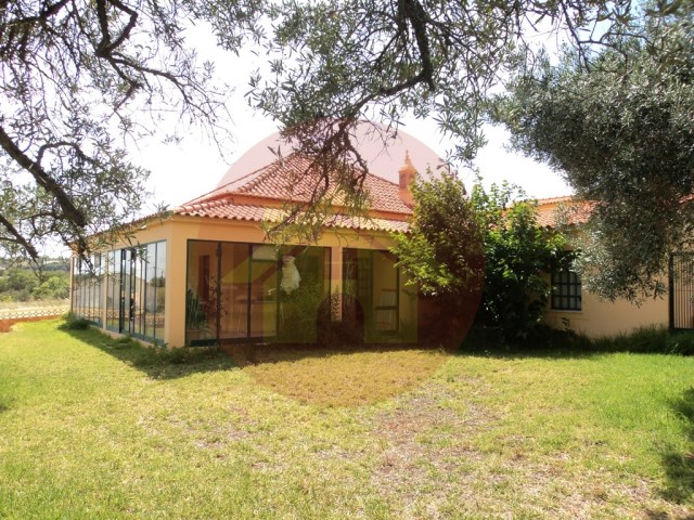 Farm with House T1-sale-Silves, Algarve
