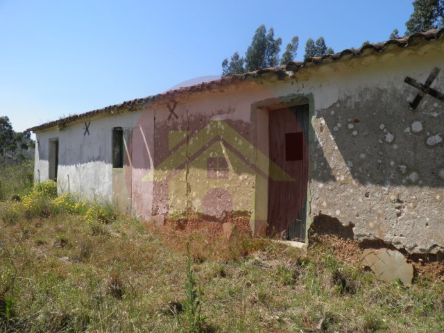 For sale-farm Monchique, Algarve