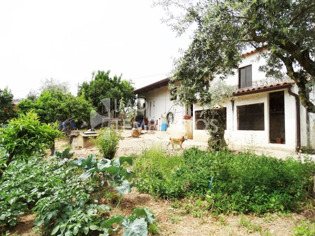 Village house c/1500 m2 of land-Ferreira do Zêzere