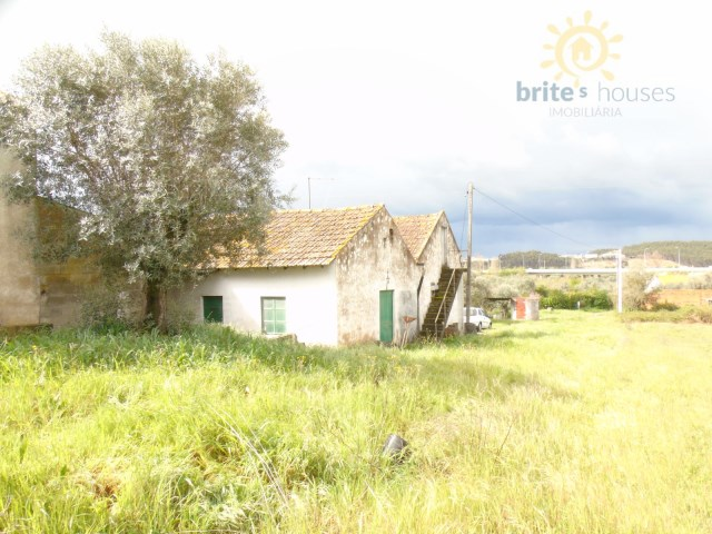 Old stone cottage for sale with land , fruit trees and a