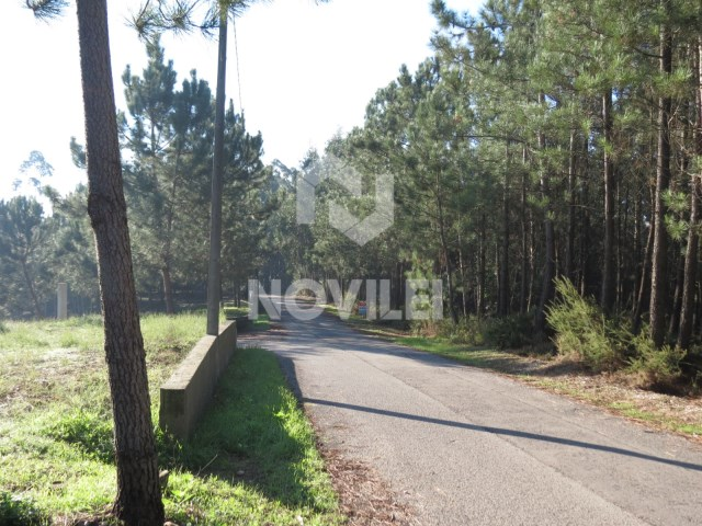 Land with construction feasibility in Leiria