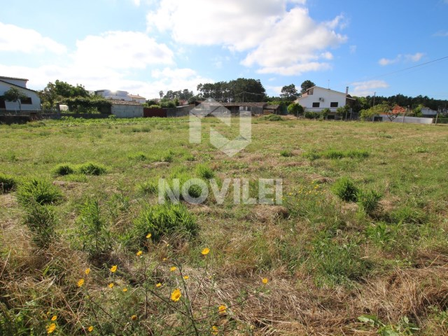 Urban land with 2030m2 with EN109 road and front for the rua Dom Dinis