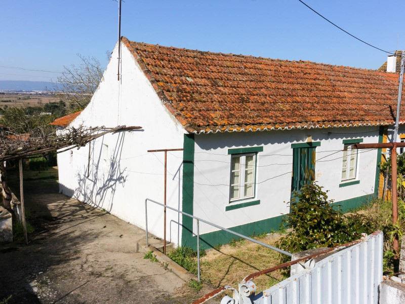 House 2 bedrooms to retrieve with land and orchard in the Carregueira, for sale