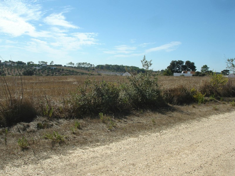 Land with construction Feasibility, in Madrid, for sale