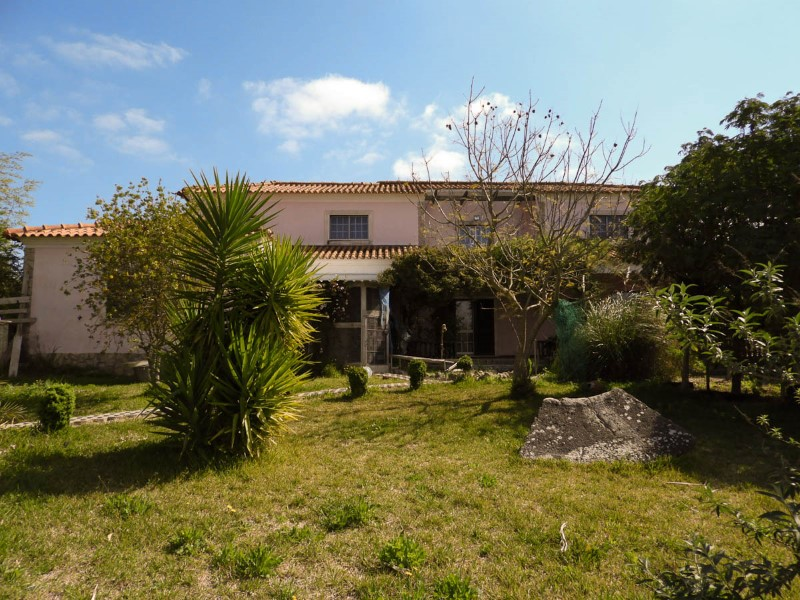 Farm with House T6, less than 1 hour from Lisbon and the beach, for sale
