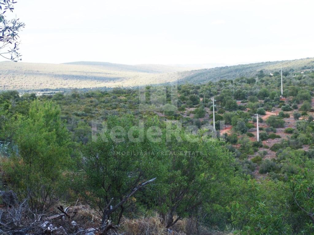 Terrain mixte Esteveira (1)