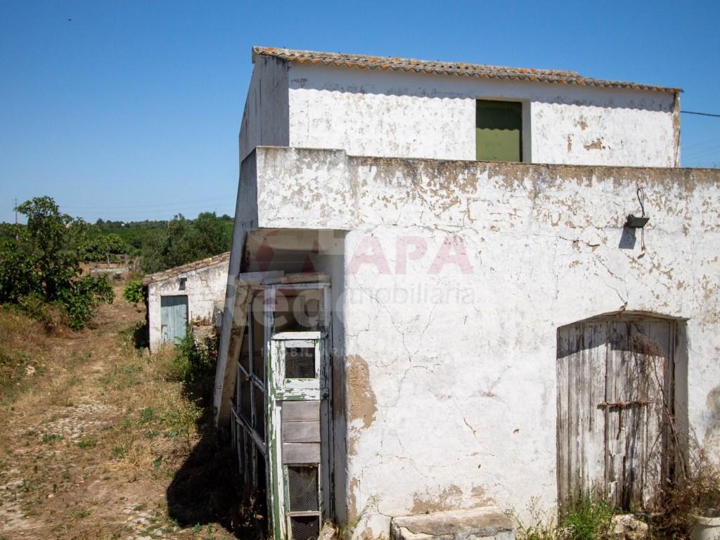 Moradia in Conceição e Estoi (27)