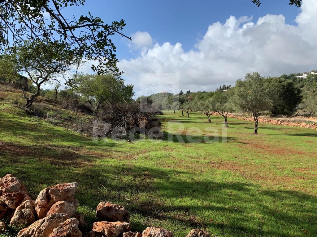 Terrain mixte in Loulé (São Sebastião) (13)