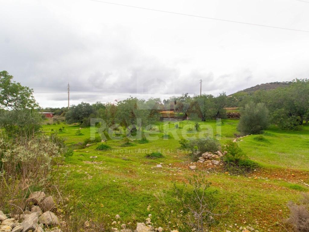 Terrain Rustique in Conceição e Estoi (1)