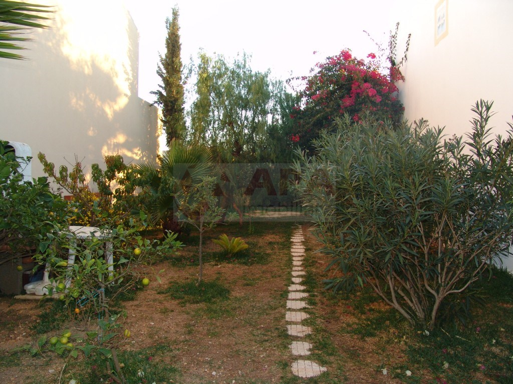 Terrain á  Murteira (2)